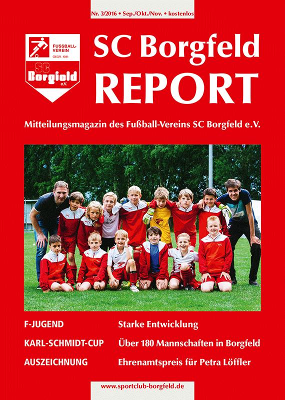 borgfeld_report_titel